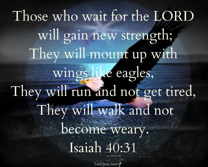 Isaiah 40 31 Isaiah 40 31